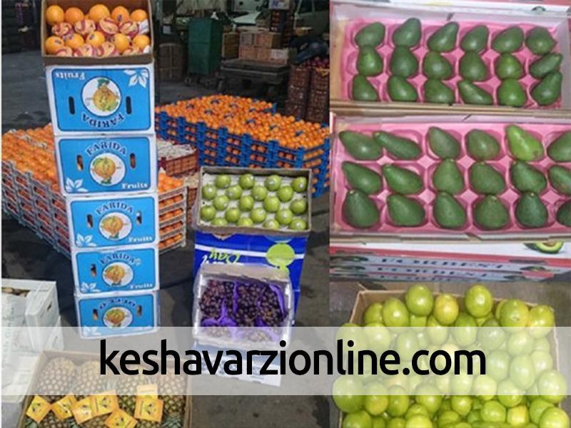 اُفت صادرات محصولات کشاورزی با نداشتن بسته بندی مناسب