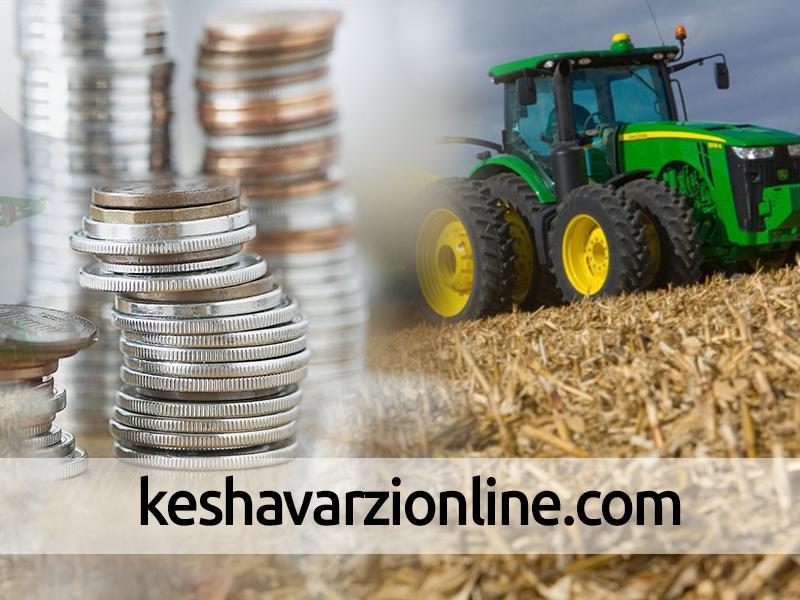 توجه به کاهش ریسک ها در بخش کشاورزی