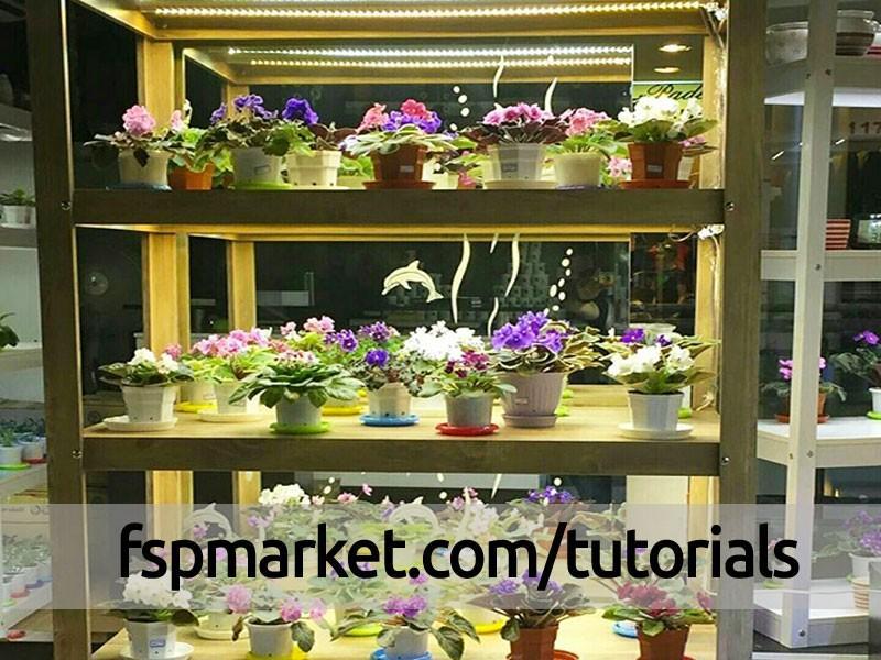 زیبا سازی و دیزاین منازل با گل و گیاه