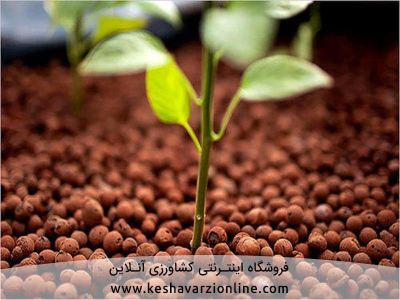 لیکا و لیکاپون در هیدروپونیک و کشاورزی