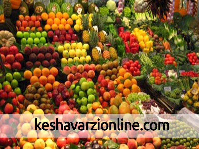 صادرات 450 میلیون دلار محصولات کشاورزی از خراسان رضوی