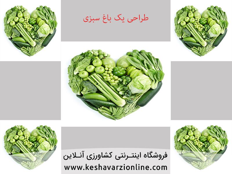 روش کاشت سبزی در منزل