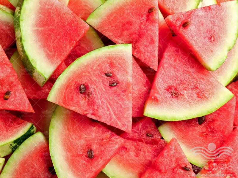 برنامه کامل تغذیه هندوانه و خربزه