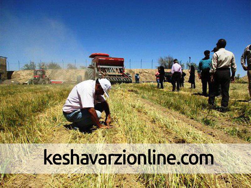 اجرای 22 هزار هکتار خاک ورزی حفاظتی در دزفول