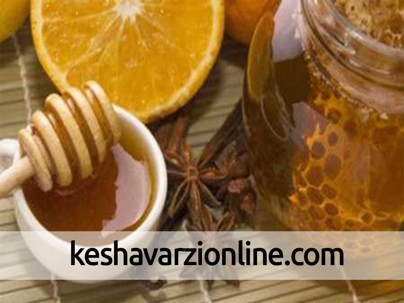 تولید سالانه ۸۰ هزارتن عسل در کشور