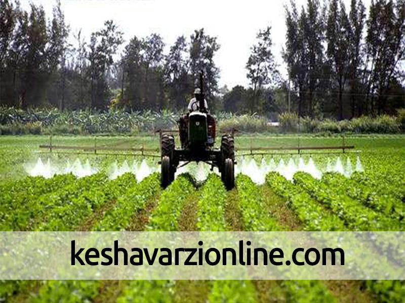 35درصد محصولات کشاورزی کشور آلودگی شیمیایی دارند