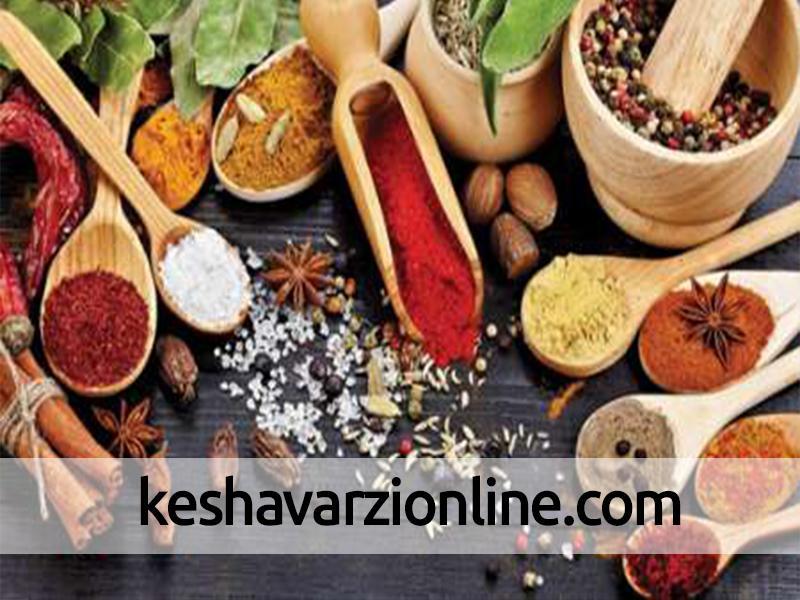 تشکیل کمیته مشترک برای تعیین استاندارد گیاهان دارویی با وزارت جهاد کشاورزی