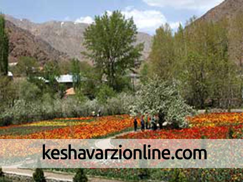 صدور گواهی صادرات 22 هزار گلدان گل و گیاه زینتی از نوشهر به خارج کشور