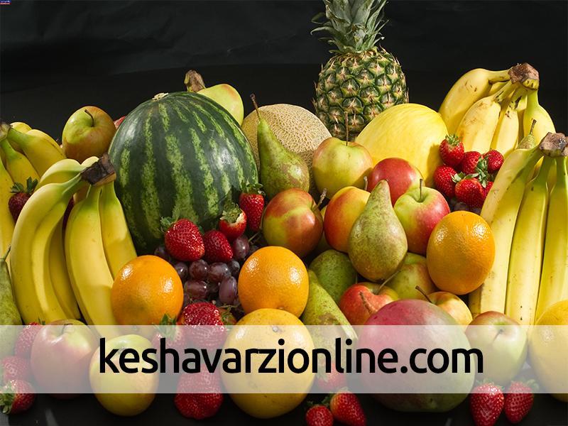تولید 17 هزار تن میوه هسته دار تابستانی در کهگیلویه و بویراحمد