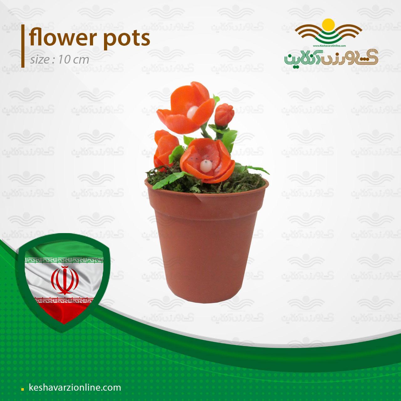 گلدان گل شقایق