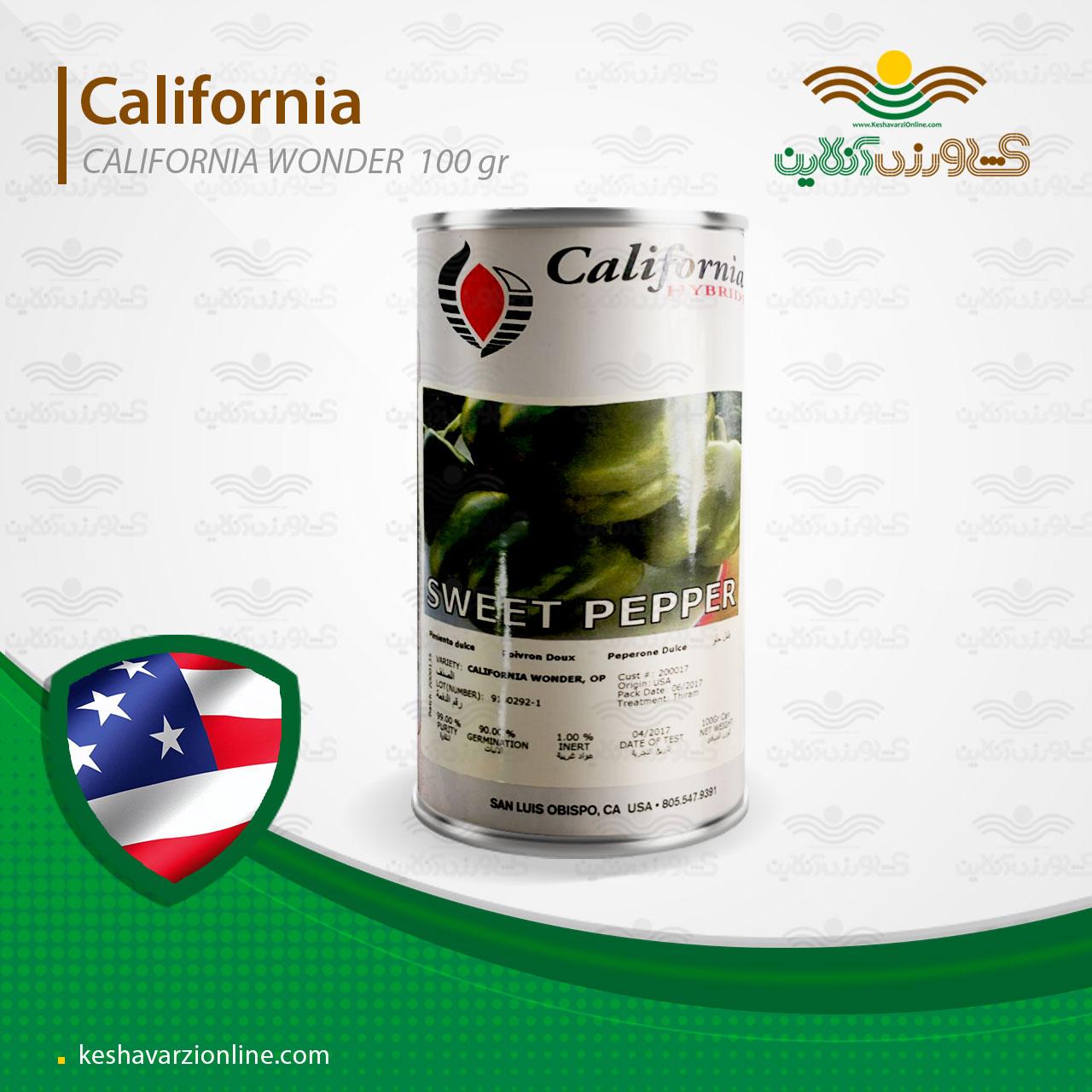 بذر فلفل دلمه ای کالیفرنیا هلندی