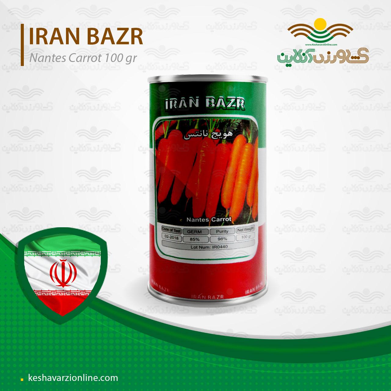 بذر هویج ایرانی نارنجی و کشیده