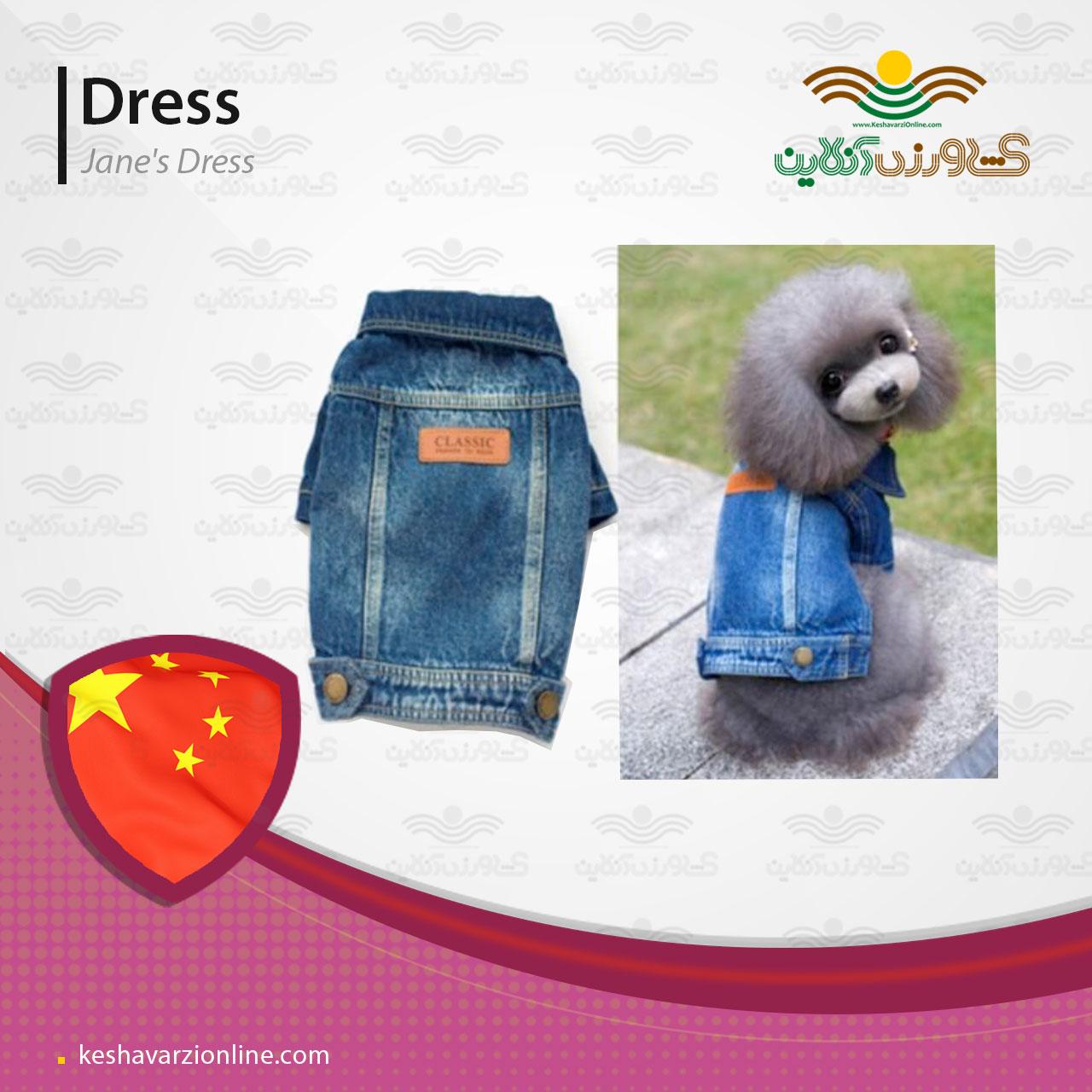 لباس جین سگ
