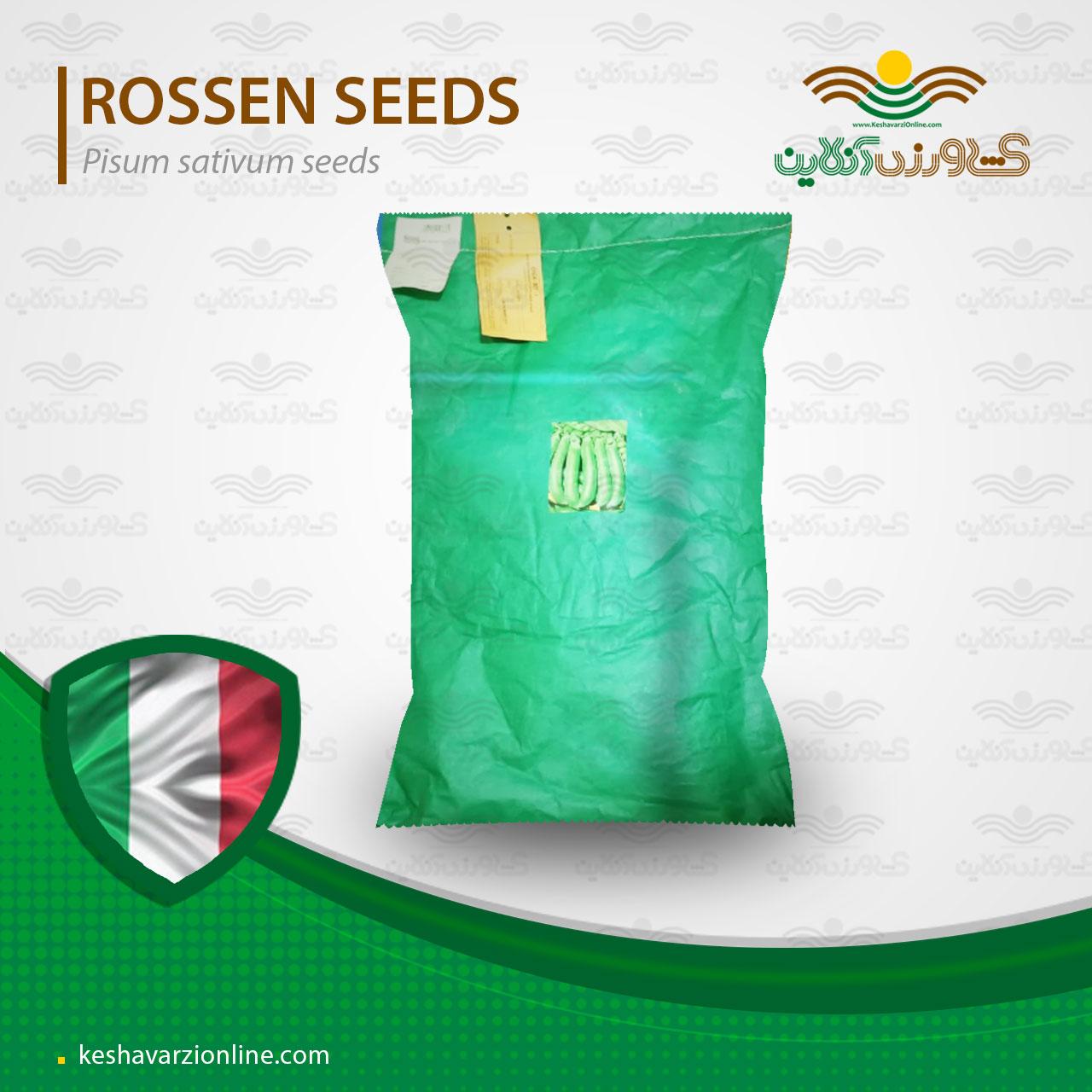 بهترین بذر نخود فرنگی خارجی ولف ایتالیا