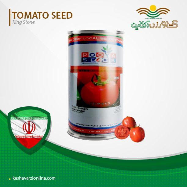 بذر گوجه فرنگی گرد کینگ استون