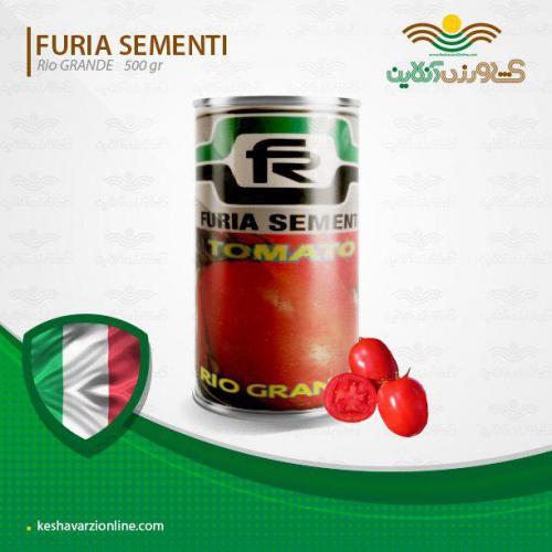 بذر گوجه فر نگی ریوگرند ایتالیا