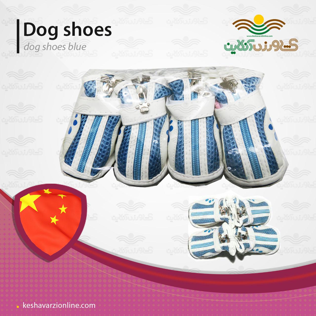 کفش مخصوص سگ