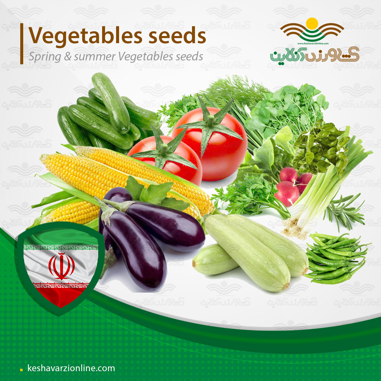 پکیج کاشت سبزیجات بهاره و تابستانی