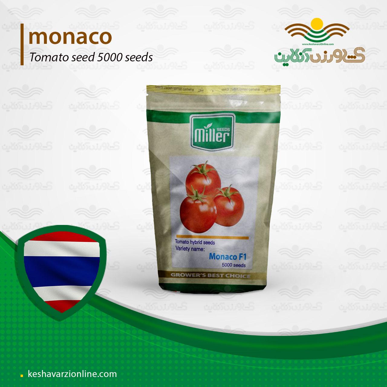 موناکو پربارترین بذر گوجه فرنگی گرد صادراتی