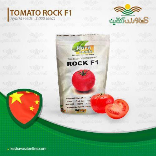 پربارترین گوجه فرنگی بنام راک