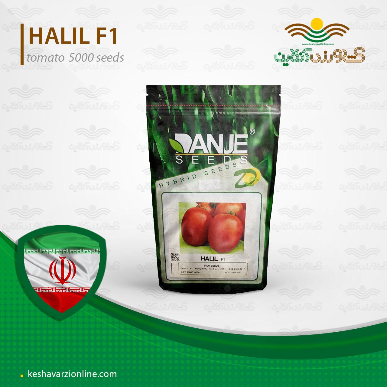 بذر گوجه هلیل