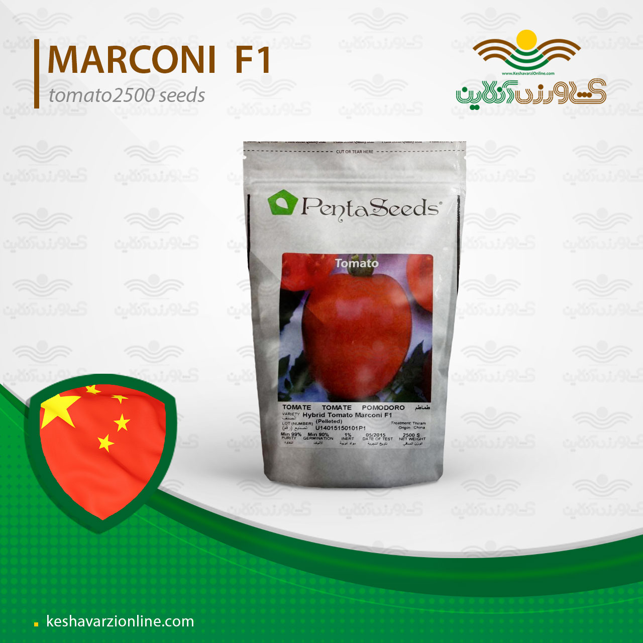 بذر گوجه فرنگی مارکنی زودرس و خوش رنگ