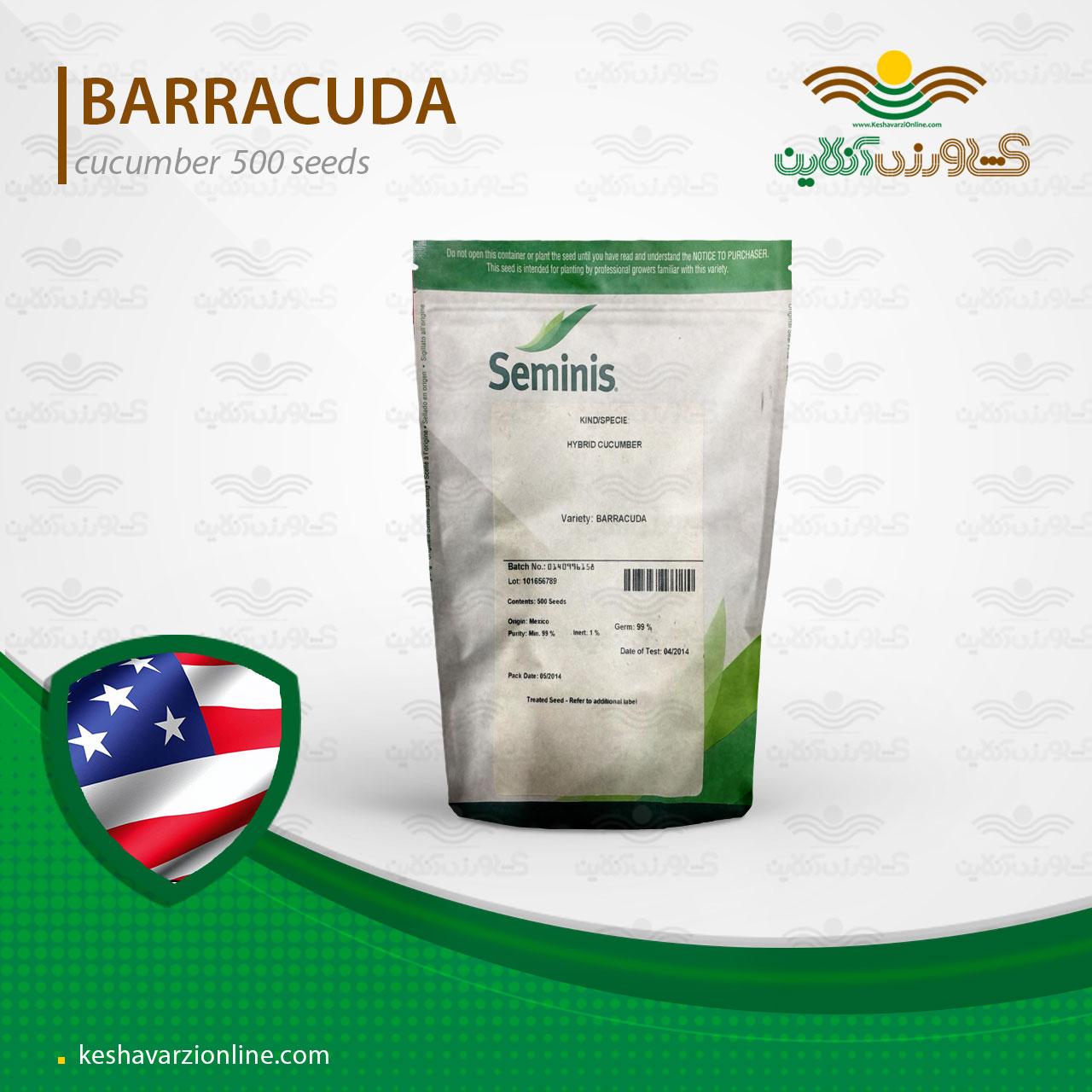 بذر خیار گلخانه ای هیبرید باراکودا