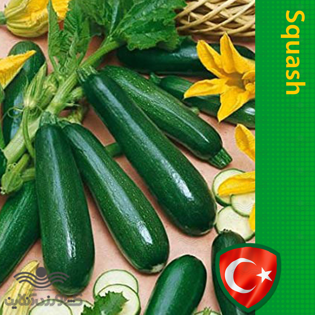بذر کدو سبز تیره خانگی