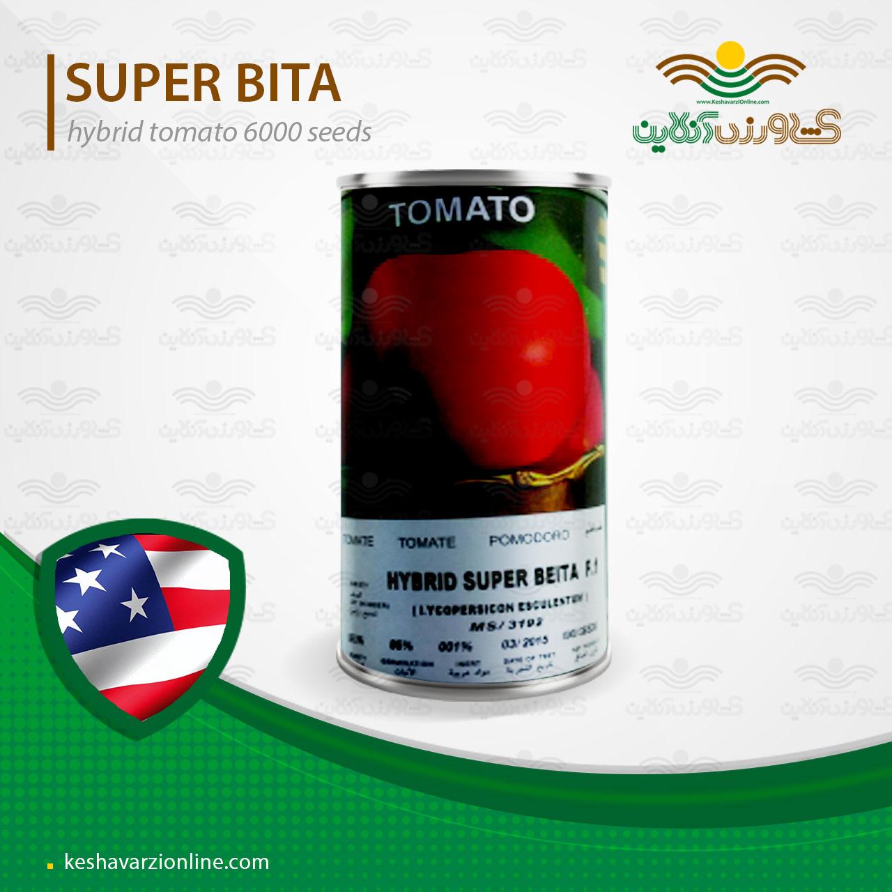 بذر گوجه فرنگی سوپر بیتا