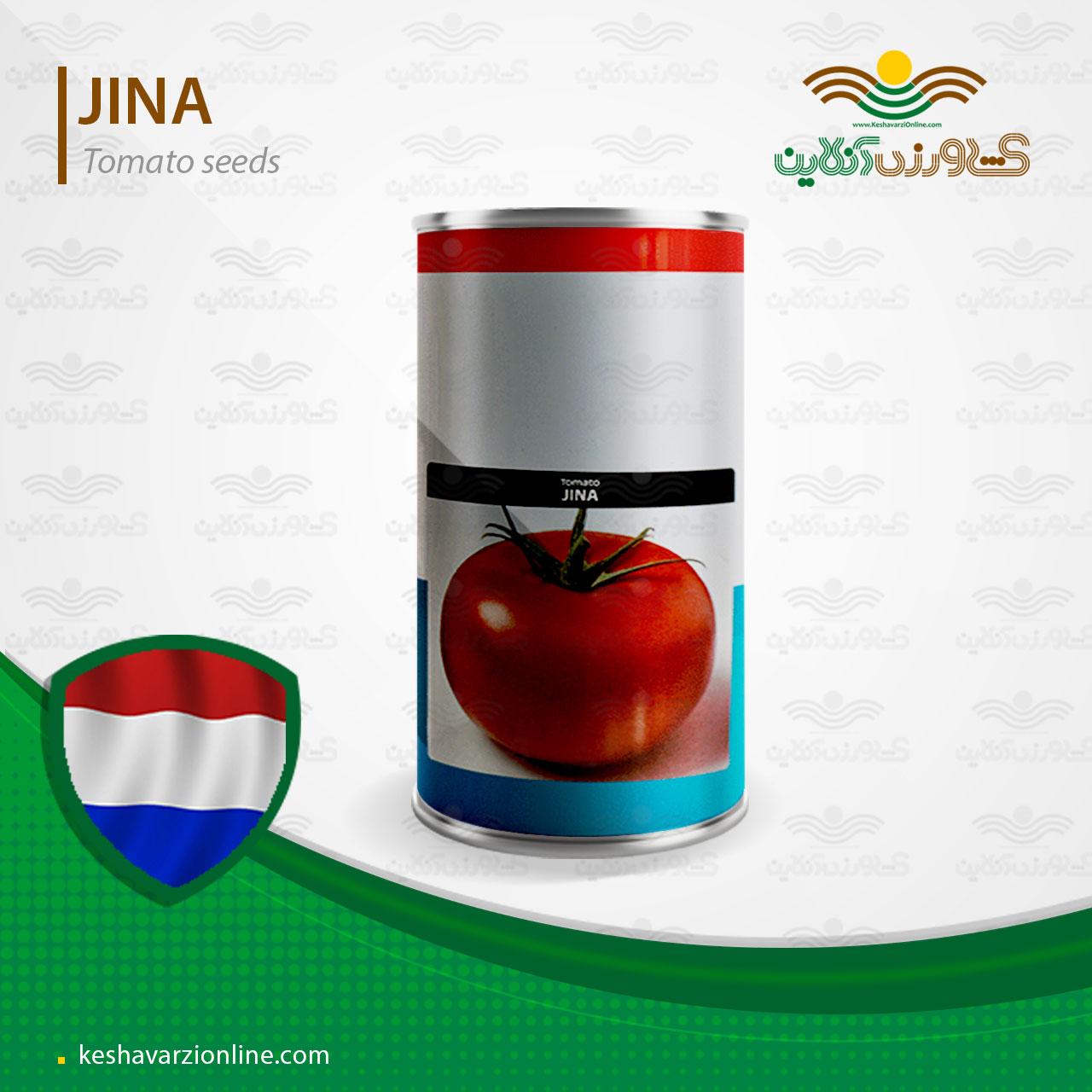 بذر گوجه فرنگی جینا