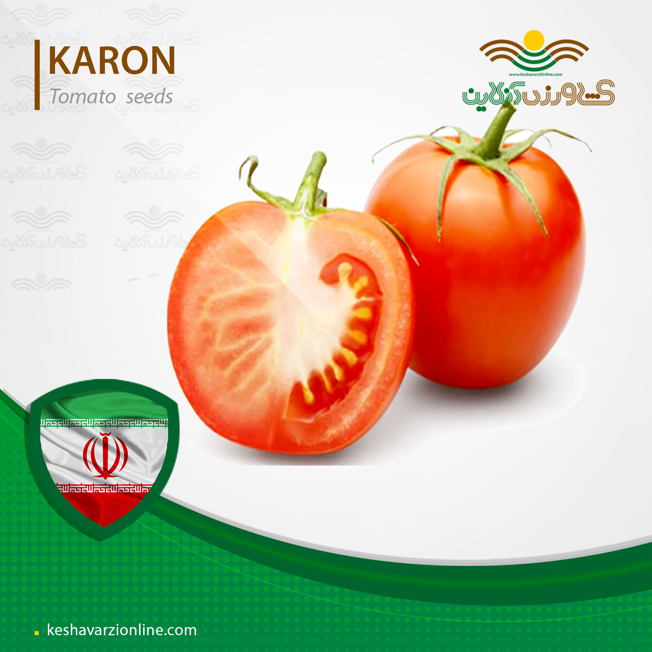 بذر گوجه فرنگی فلات کارون