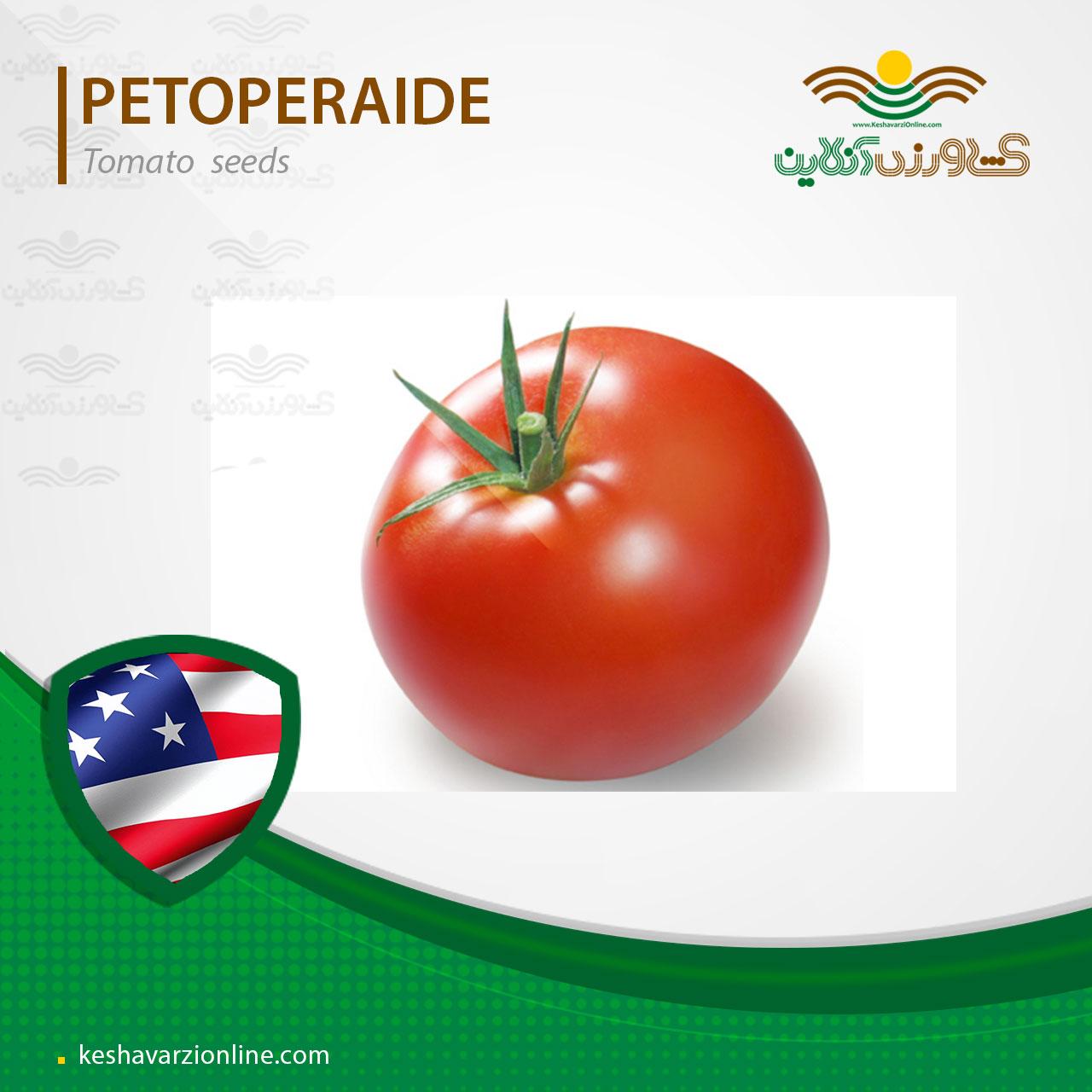 بذر گوجه فرنگی پتو پراید
