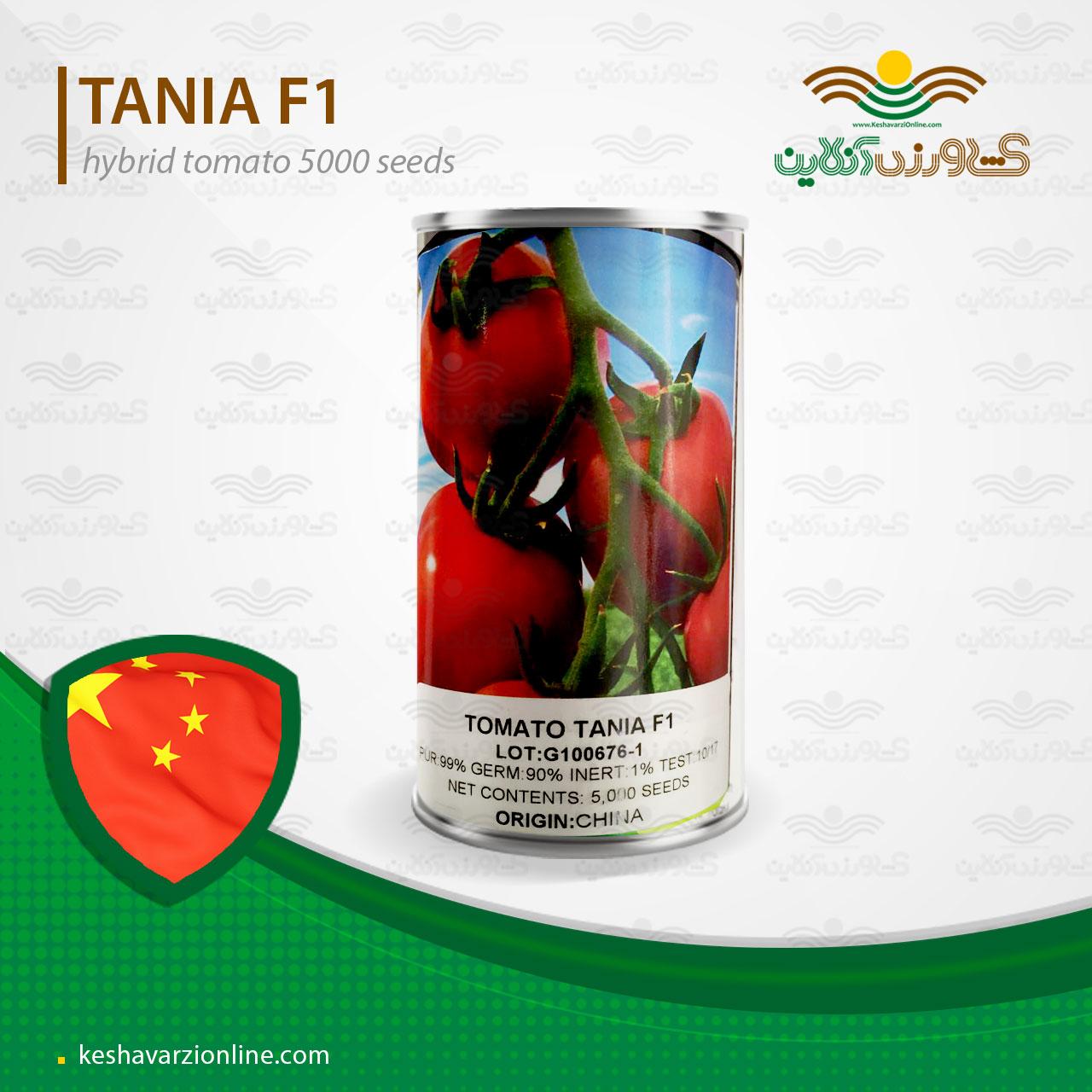 بذر گوجه فرنگی تانیا