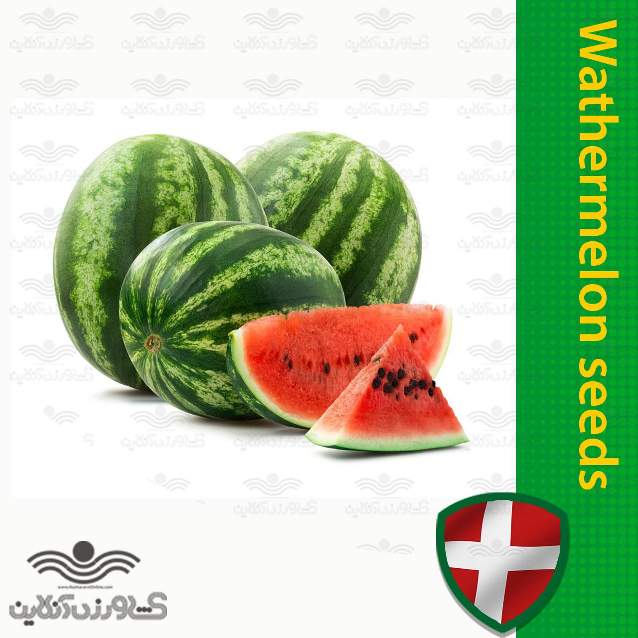 بذر هندوانه خط دار خارجی خانگی