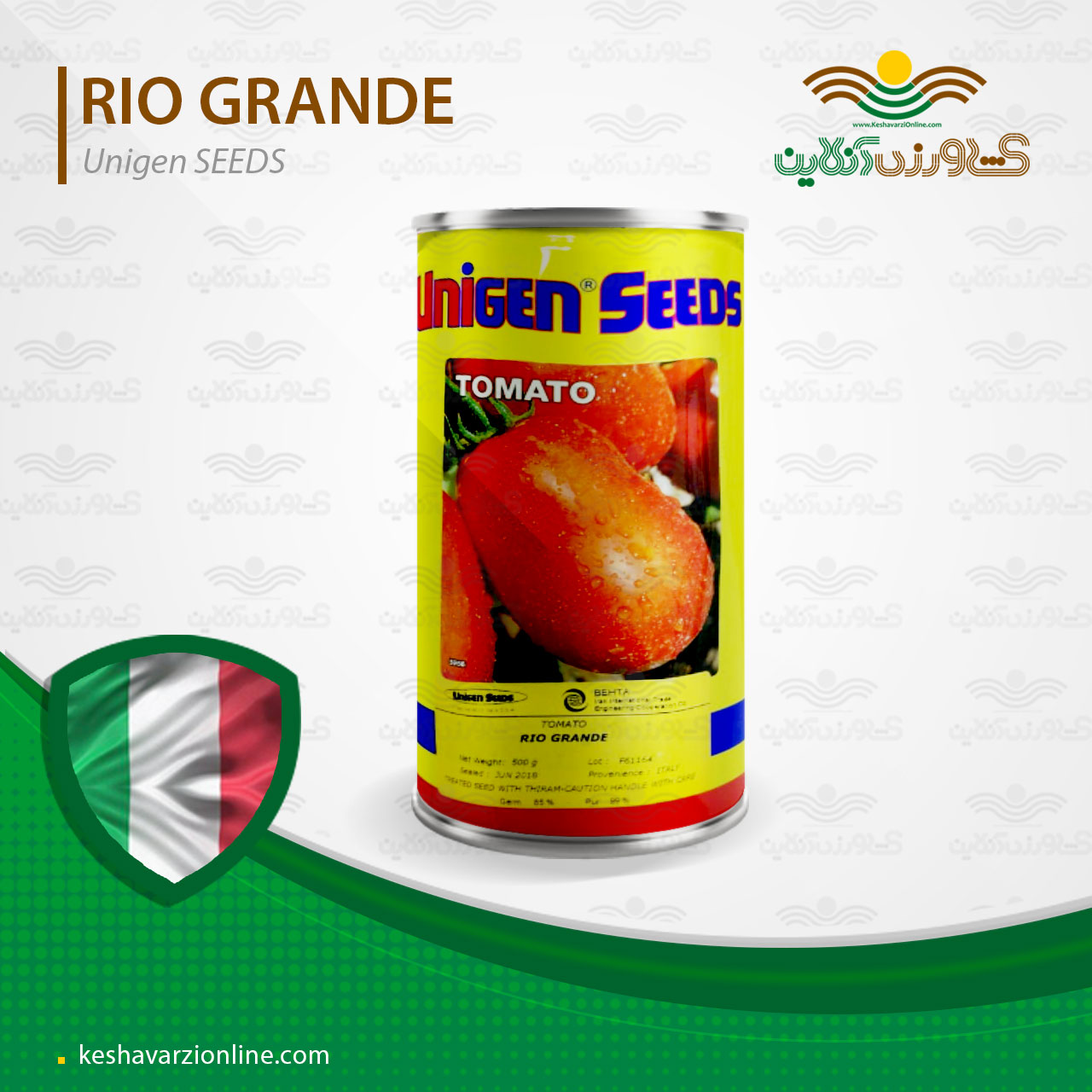 بذر گوجه فرنگی یونی ژن ریوگرند