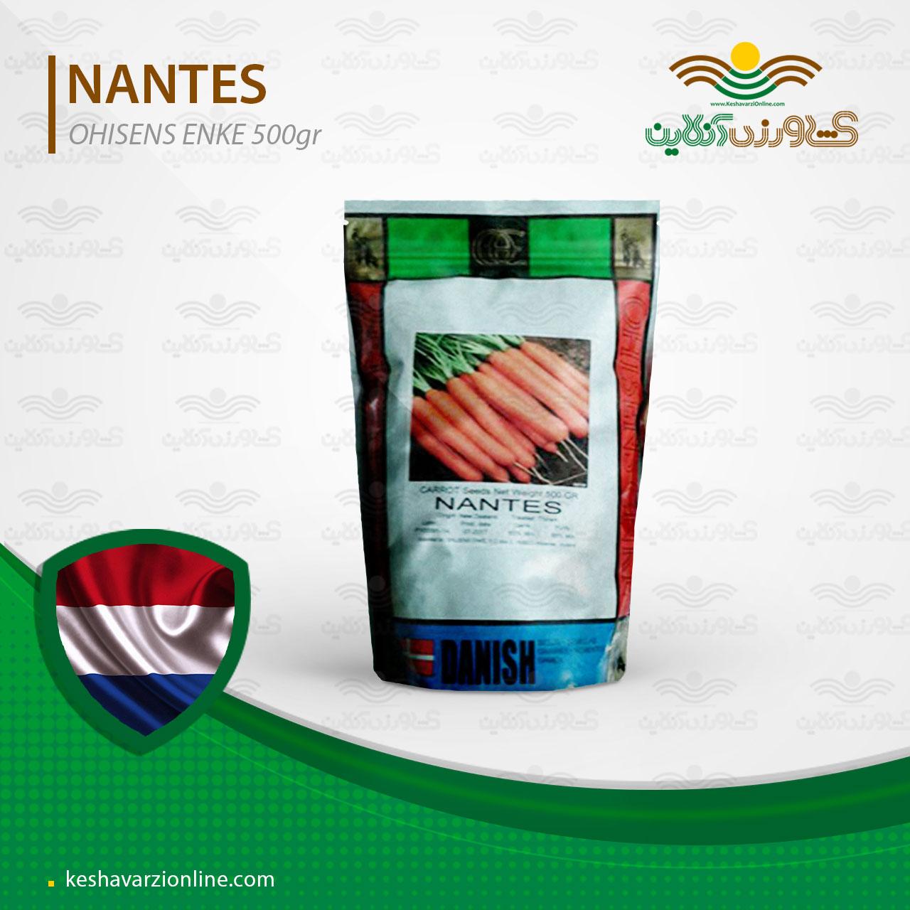 بذر هویج پر محصول نانتس اولسنکه