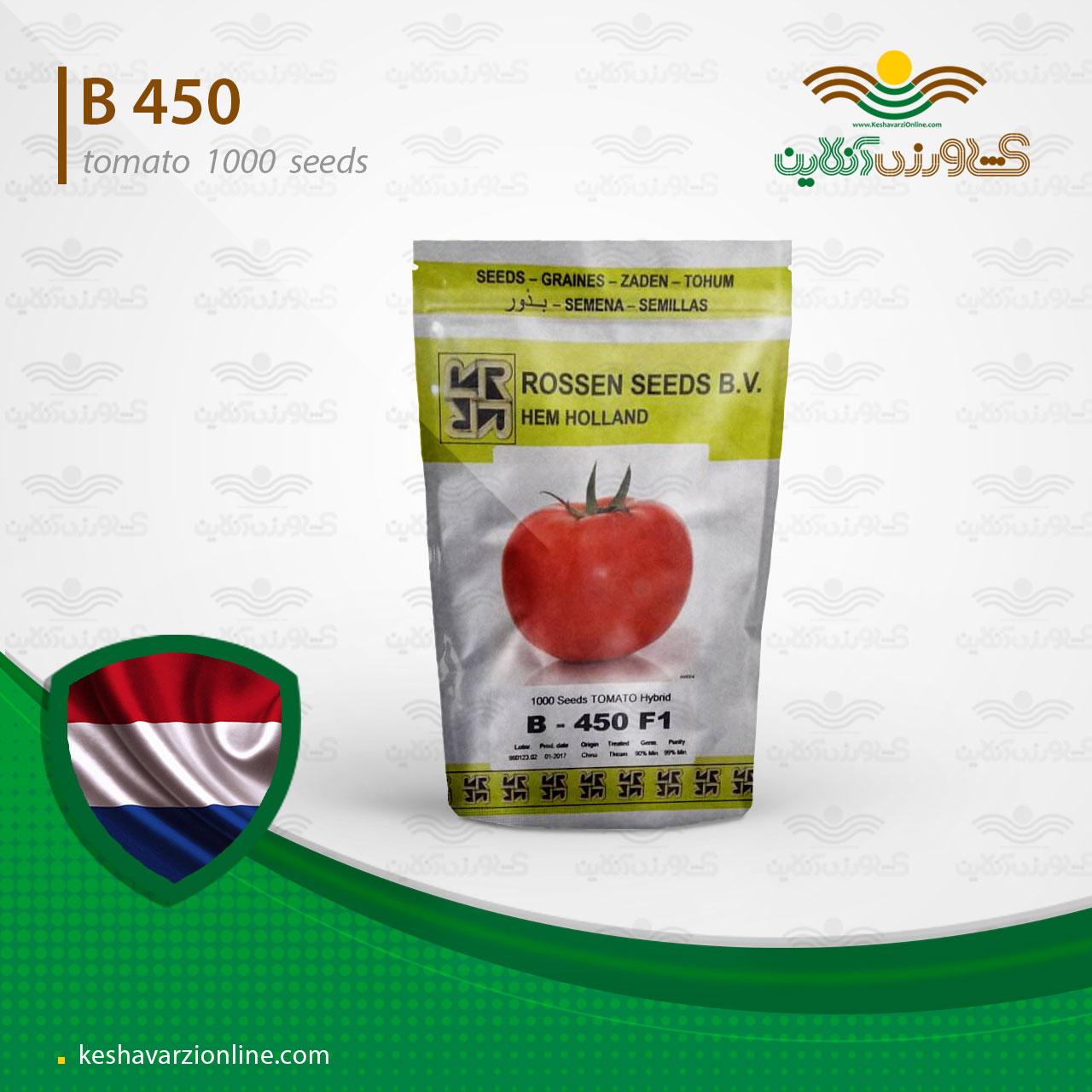 بذر گوجه گلخانه ای بی 450 روزن سید هلند
