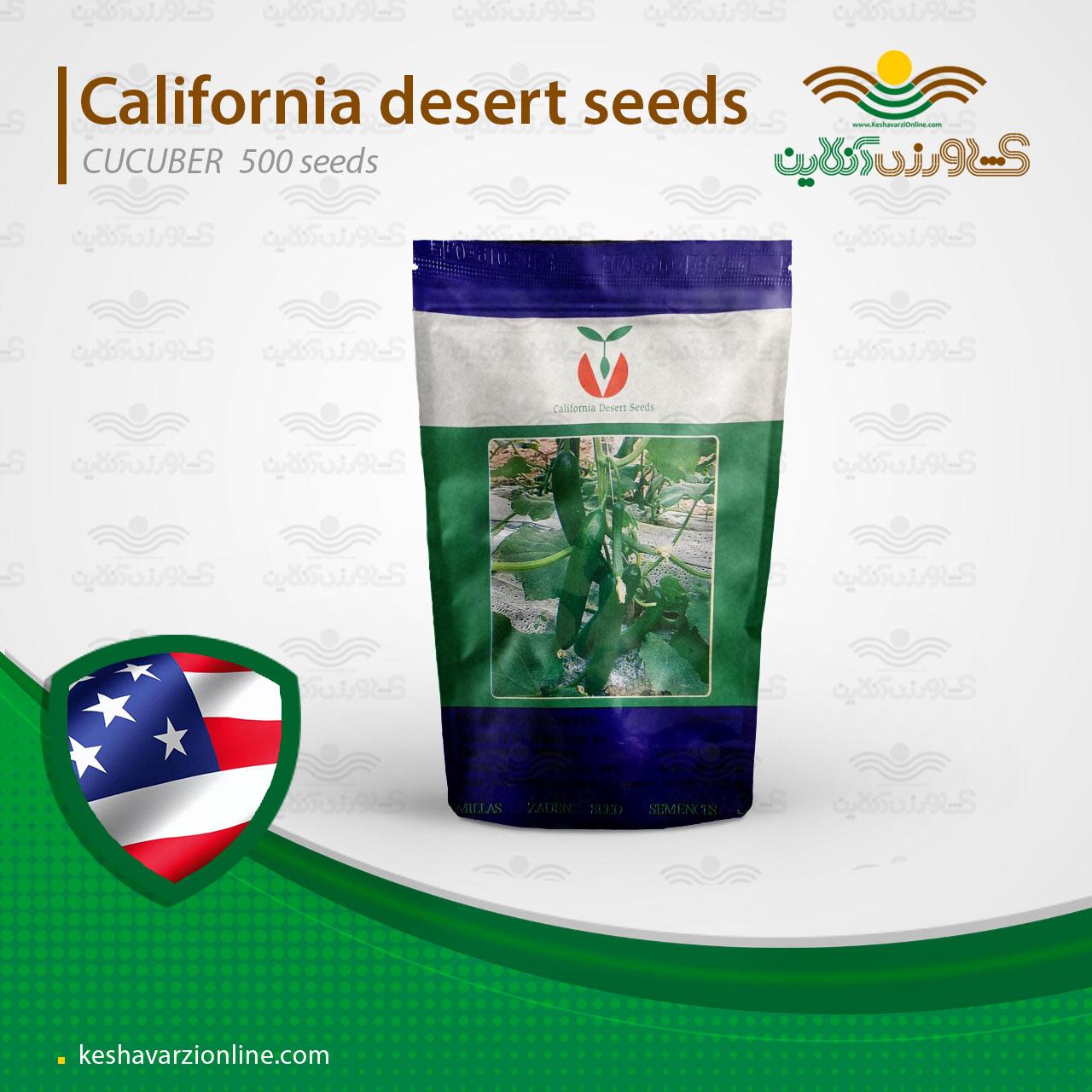 بذر خیار زمینی و گلخانه ای رادوین