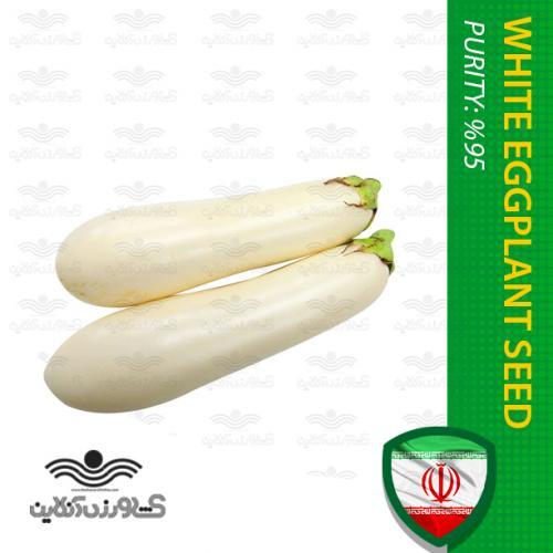 بذر بادمجان سفید قلمی بهمراه روش کاشت بادمجان
