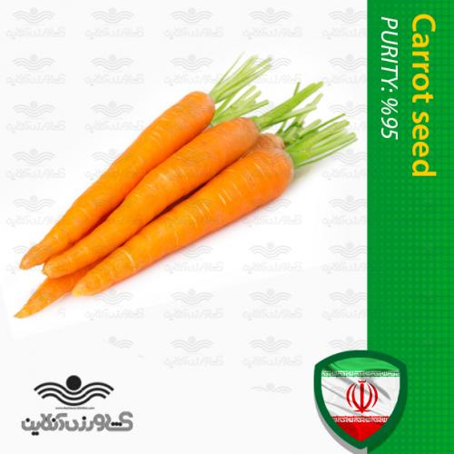 بذر هویج زرد