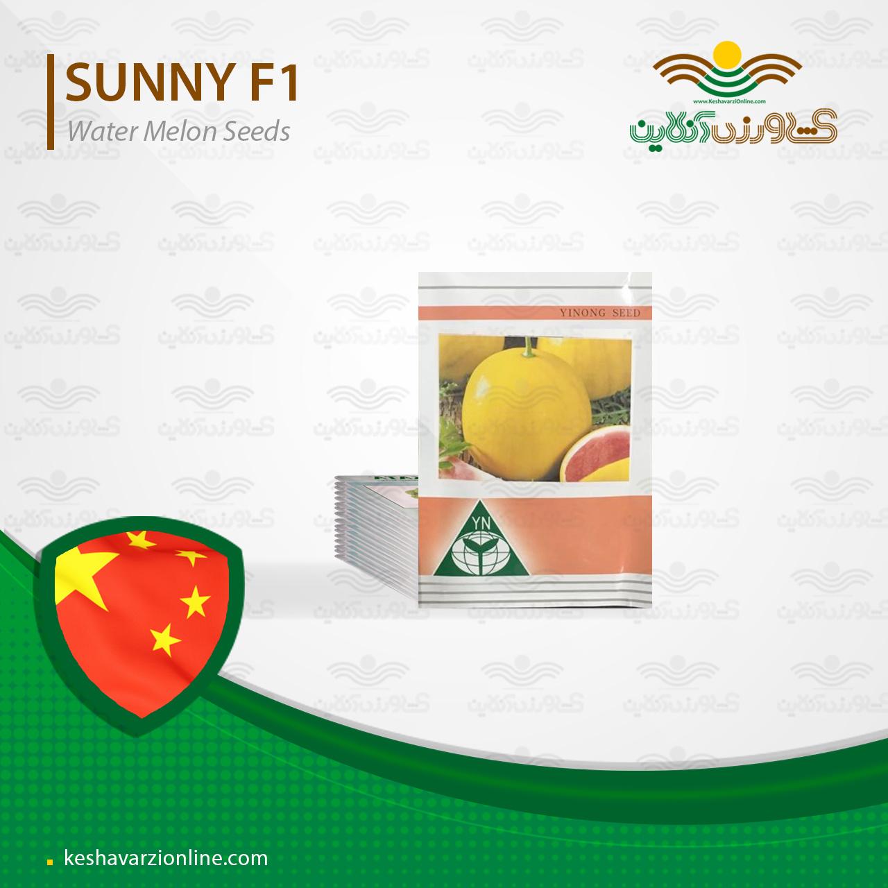 هندوانه خاص و جذاب پوست زرد