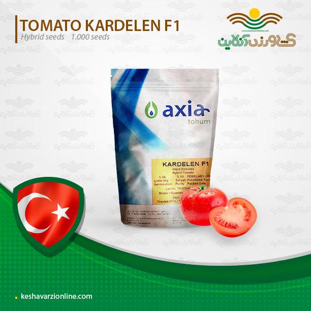 بذر گوجه گلخانه ای داربستی کاردلن
