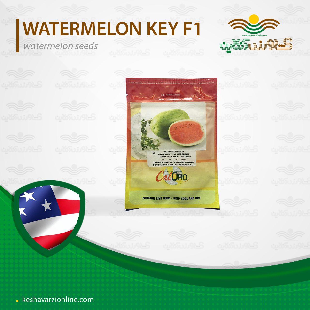 بذر هندوانه صادراتی زودرس کی آمریکا