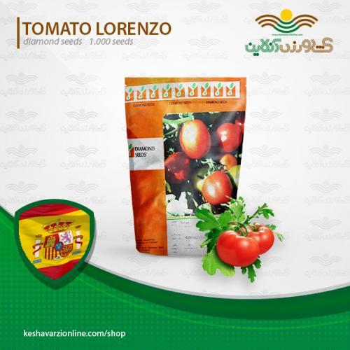 فروش بذر گوجه فرنگی زودرس لورنزو