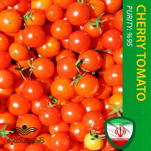 بذر گوجه گیلاسی