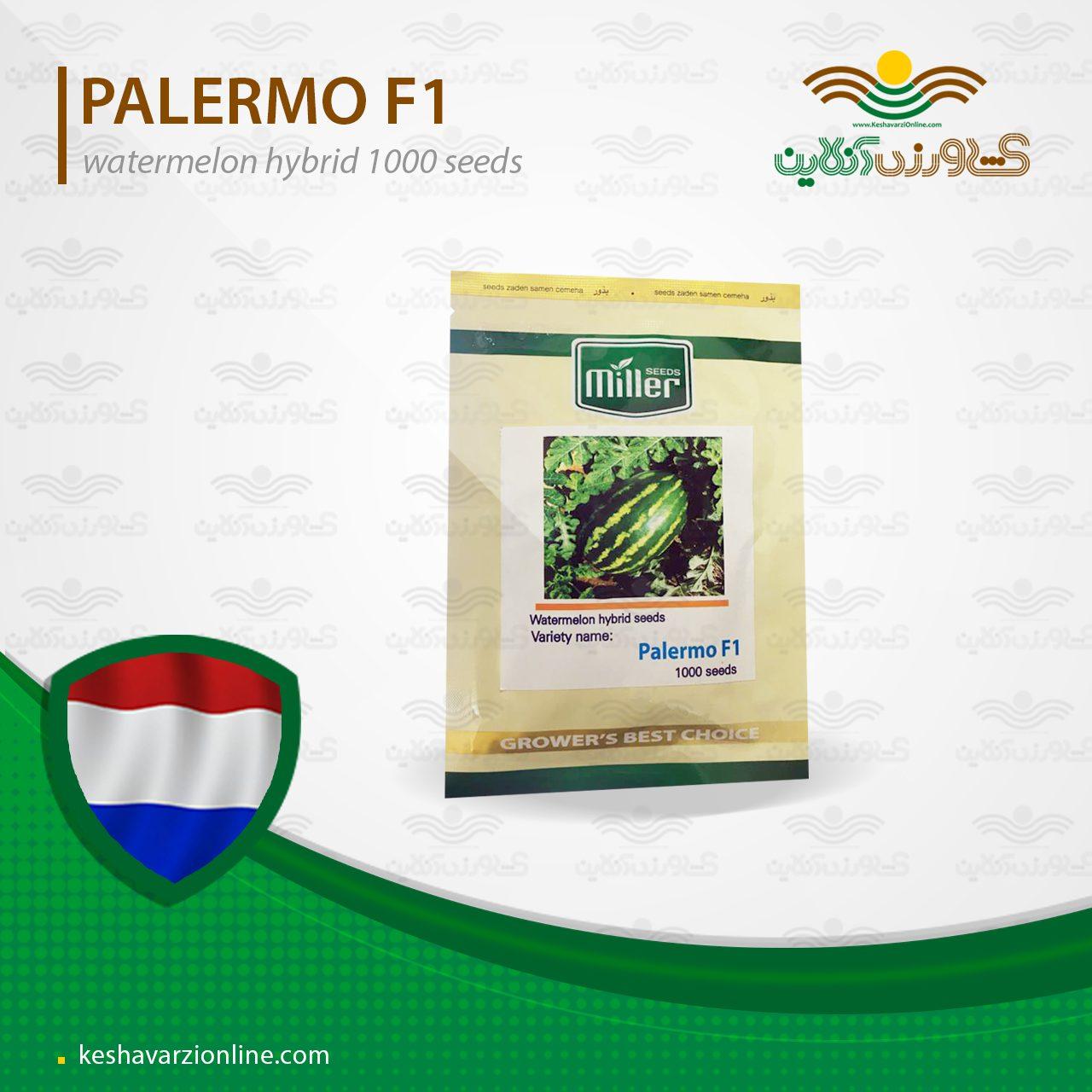 بذر هندوانه خطی هیبرید پالرمو