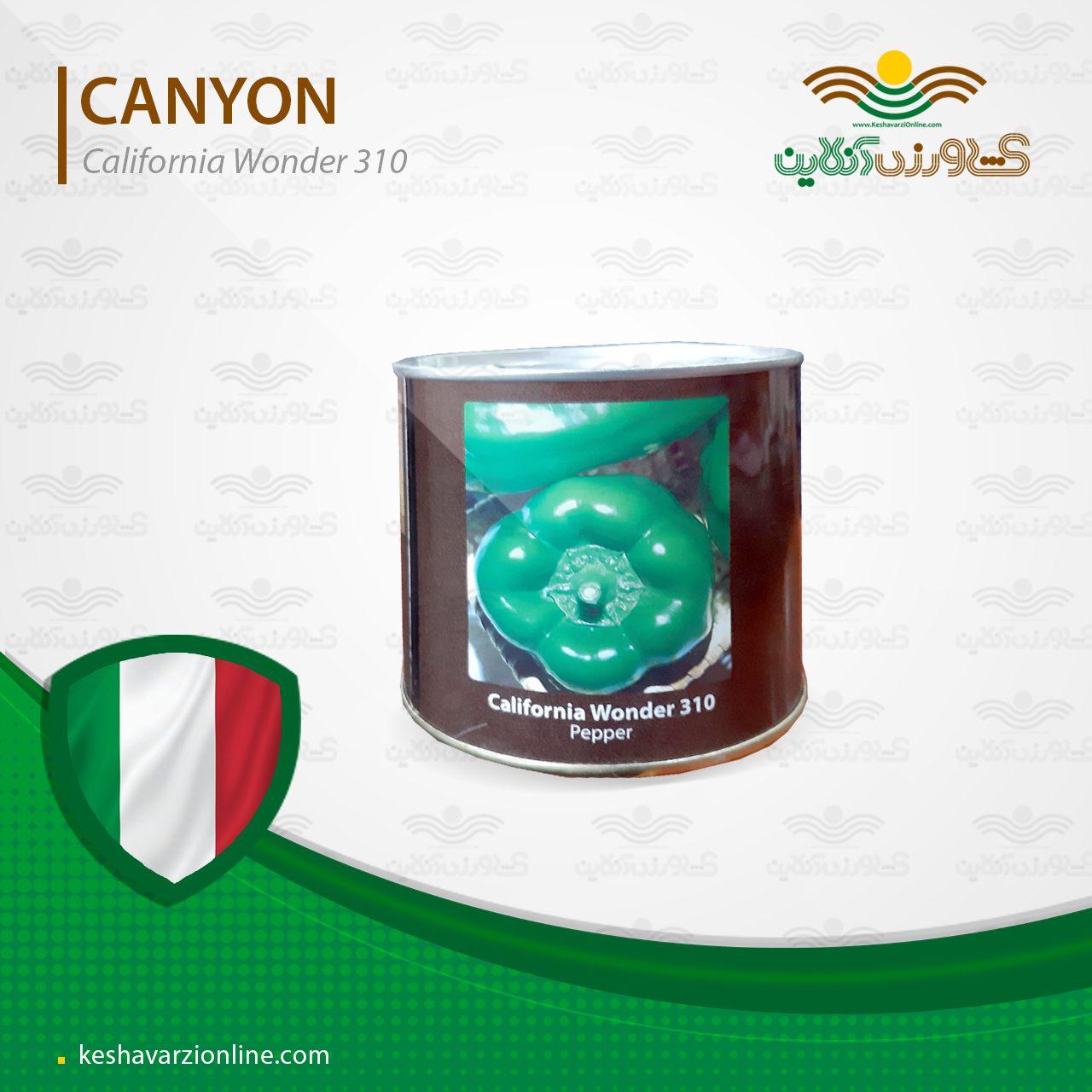 بذر فلفل دلمه ای کالیفرنیا واندر 310 کنیون ایتالیا