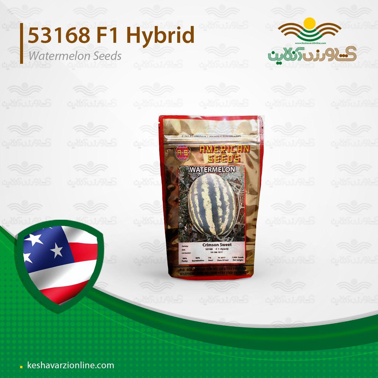 بذر هندوانه کریسمون سوئیت بلوکی رنگین کمان