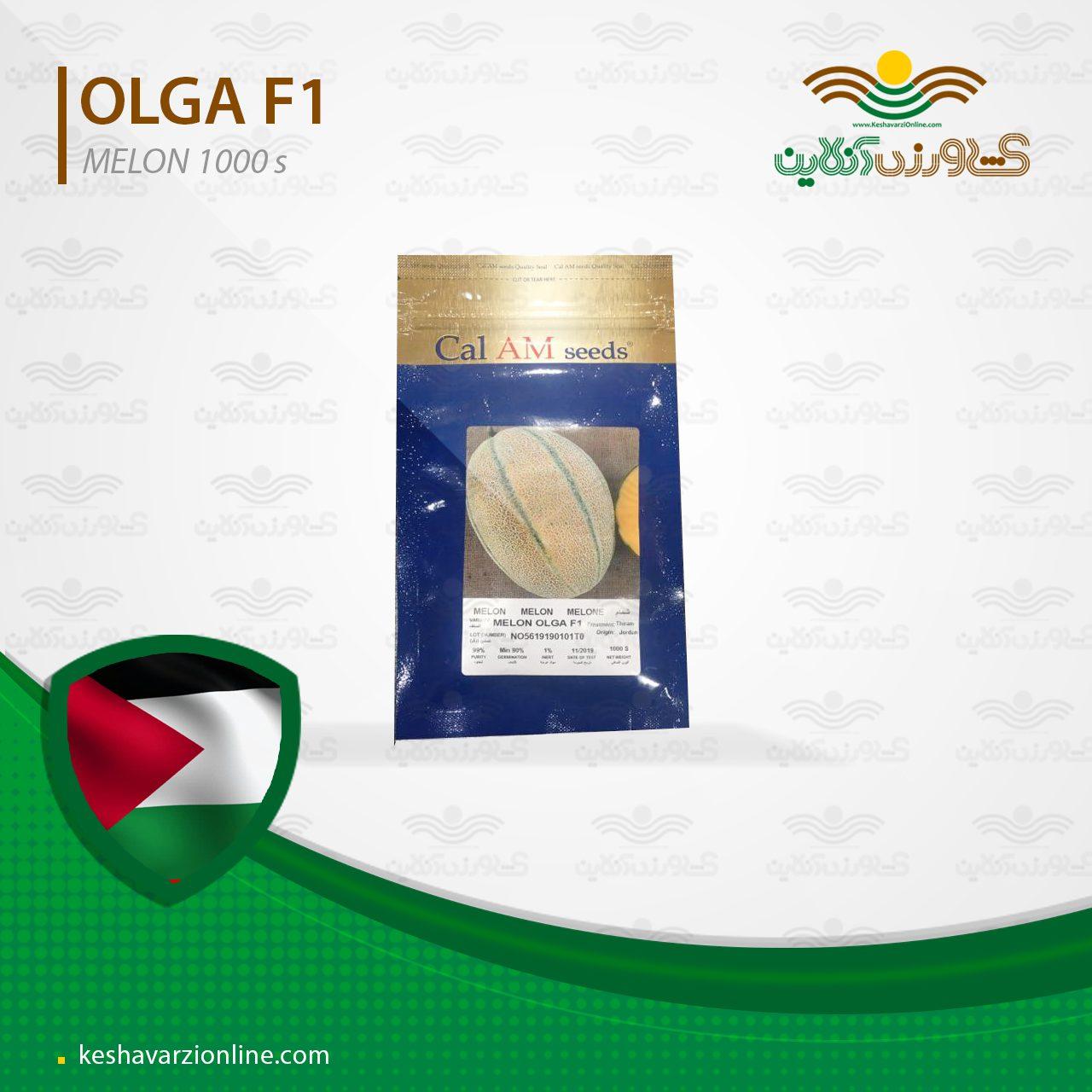 بذر خربزه یا ملون اولگا تیپ جانا