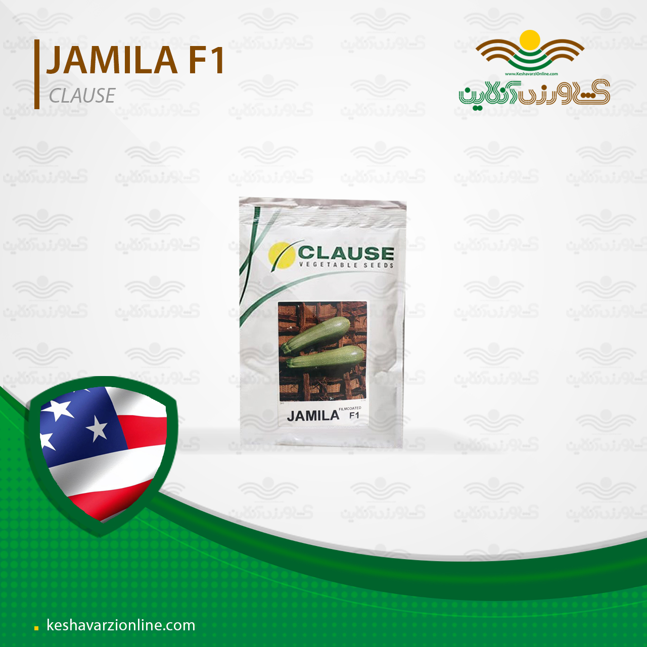 بذر کدو سبز خورشتی هیبرید جمیلا شرکت کلوز آمریکا